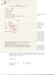 Litsenziu ENG APOSTILLE_page-0001
